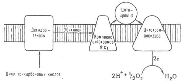 121_140-1.jpg