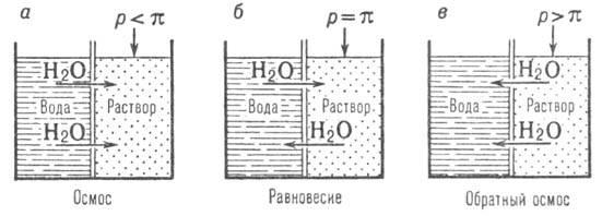3004-19.jpg