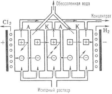 3005-1.jpg