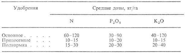 3018-3.jpg