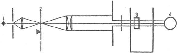 4017-1.jpg