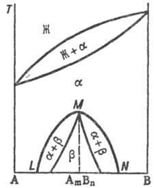 4101-8.jpg