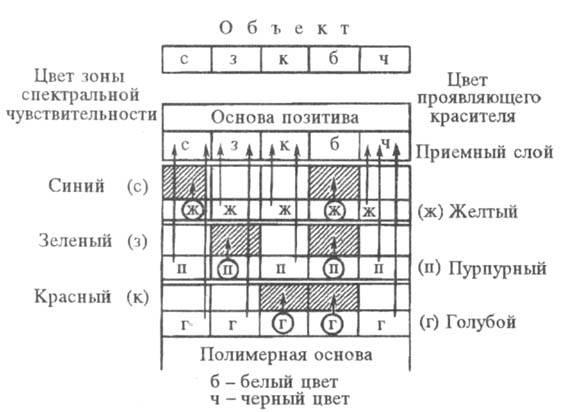 5033-3.jpg