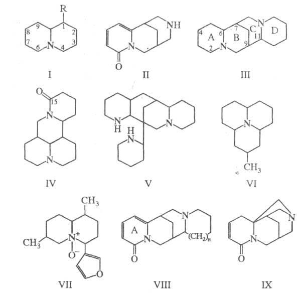 6001-16.jpg